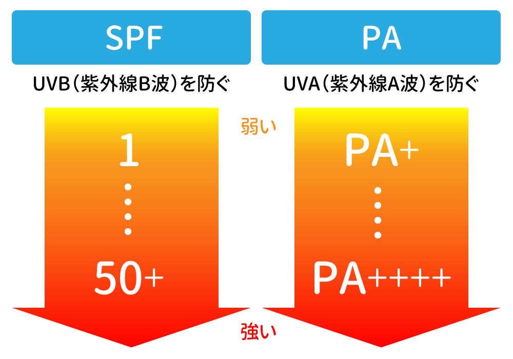 SPFとPAの仕組み